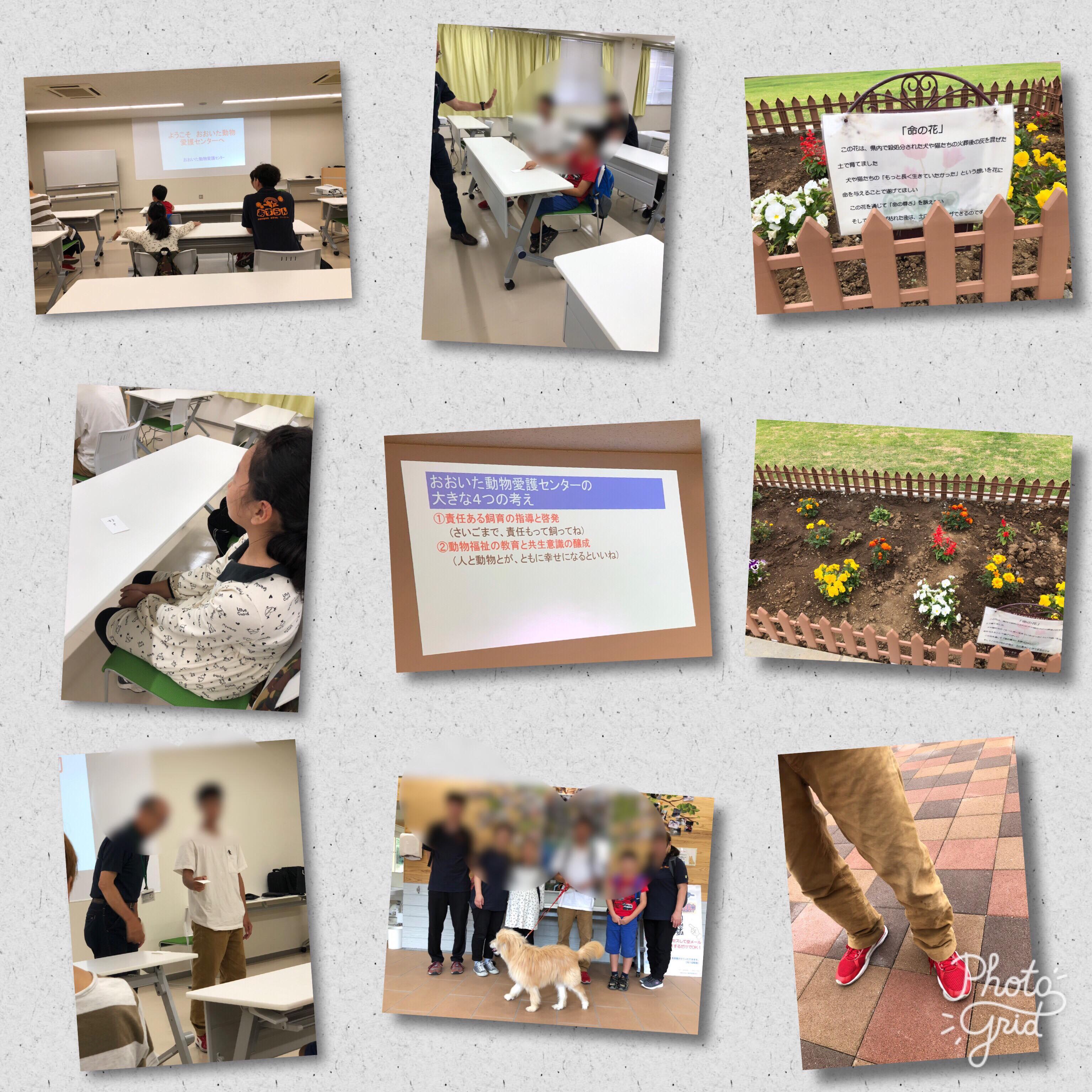 6月21日 フリースクールと高等学院 動物愛護センター